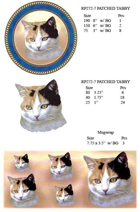 RP272-7 PATCHED TABBY