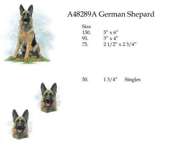 A48289A German Shepherd