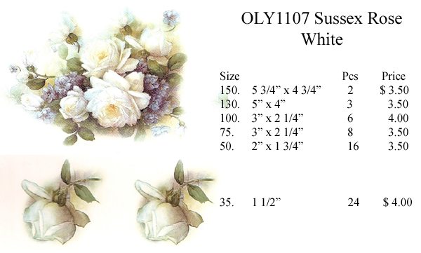 OLY1107 Sussex Rose - White