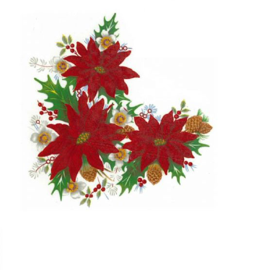 REF150 Pointsettias and Pinecones