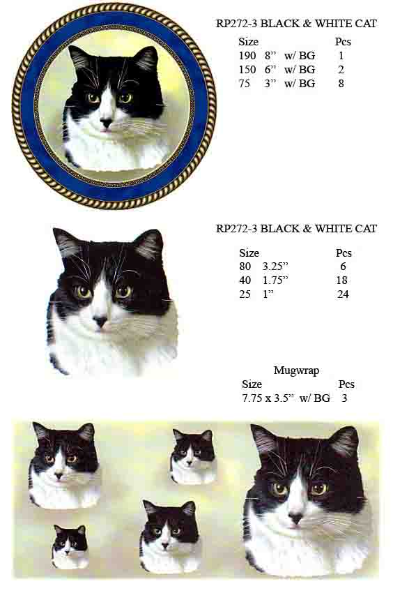 RP272-3 BLACK & WHITE CAT