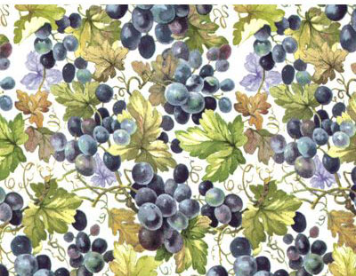 SG3038 Grapevine Chintz