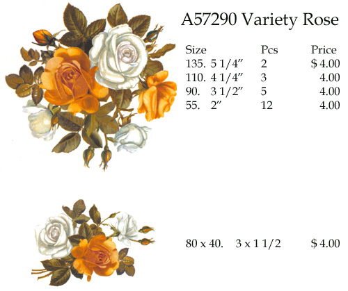 A57290 Variety Rose