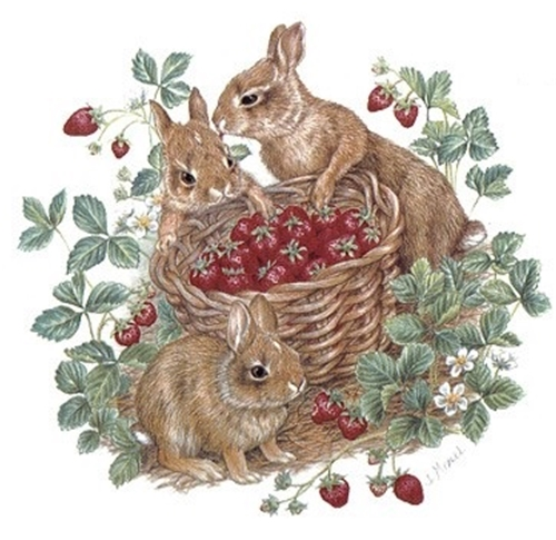 OLY202 - BERRY PATCH BUNNIES